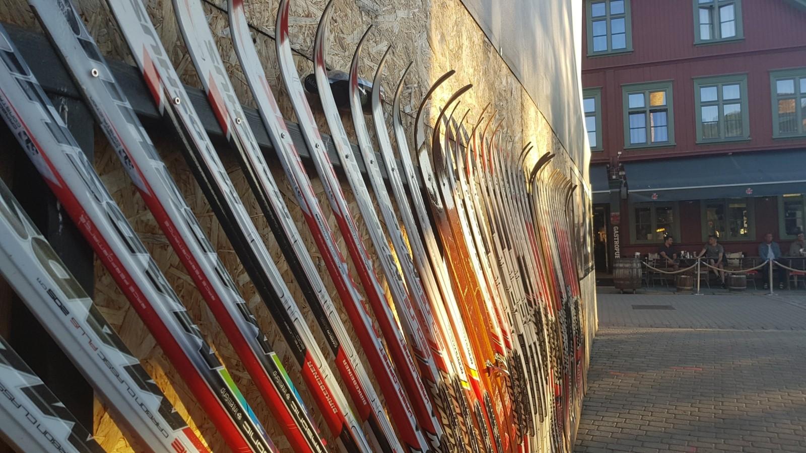 Ski Fences As Art